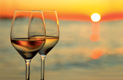 Wine Experience…